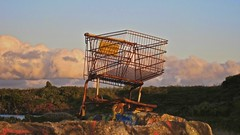 Maxfield Parrish Shopping Cart (Nick Winterhalter) Tags: sunset cloud bulb clouds shopping concrete bay tide shoppingcart bayarea albany wabisabi cart wireframe parrish outcropping maxfieldparrish maxfield