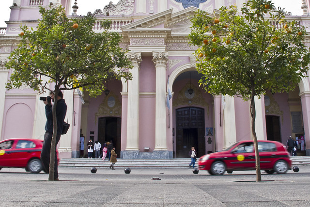 Salta katedral