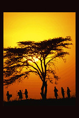 African Sunset (whiteafrican) Tags: africa wallpaper african web backgrounds iphone