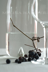 glass light (mwhammer) Tags: light stilllife food white color texture glass wine display object raisins grapes cloth grappa smrgsbord propstyling foodstyling brillianteyejewel melinahammer tabletopstyling