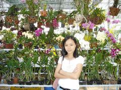 Dalat photos (nuhon_batngo_tayeunhau) Tags: dalat hoa vườn