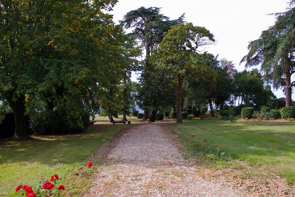 Path to a peaceful garden