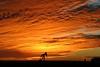 Wednesday Sunrise (Marvin Bredel) Tags: two sky oklahoma clouds sunrise december marvin okarche ultimateshot marvin908 absolutelystunningscapes bredel marvinbredel
