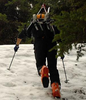 Scarpa ski boots by pat mulrooney
