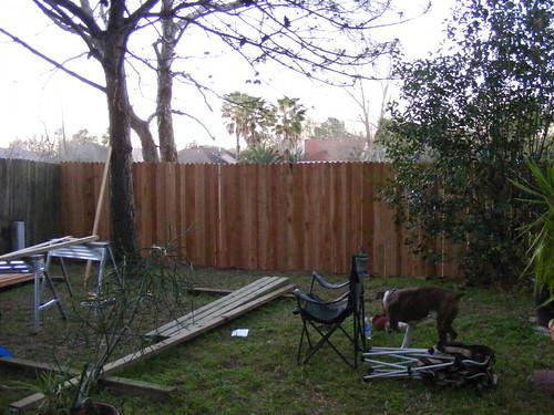 Back_Yard_Fence011.JPG
