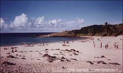 Una vista de la playa Anakena. Febrero 2002.