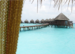Tranquility (mohlat) Tags: curtain lagoon maldives waterbungalows naturesfinest blueribbonwinner mywinners holidaydestination canona710is anawesomeshot thulhaagiriislandresort impressedbeauty irresistiblebeauty diamondclassphotographer flickrdiamond excellentphotographerawards uniquemaldives flickrelite mohlat driedpalmleaves mohamedlatheef