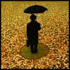 Autumn Man
