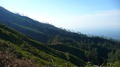P1010917 (gregoryheeren) Tags: indonesia volcano bromo ijen