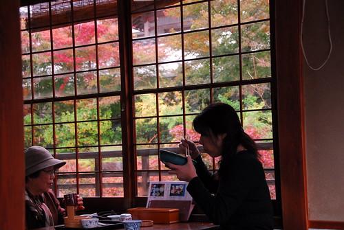 午餐 - 窗外的楓紅