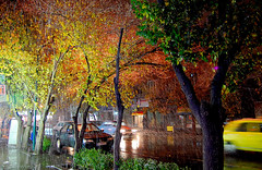 Tabriz in Snow , Iran (friend_faraway *) Tags: street city trees winter snow men landscape cityscape iran tabriz azarbaijan