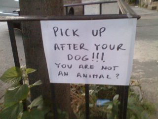 Pick up after your dog!!! You are not an animal?