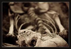 Human Remains (6) (dead by sunrise) Tags: christmas xmas travel holiday sepia skeleton skull december republic czech prague prag praha praga bones czechrepublic bone aged bohemia remains nationalmuseum prehistory humanremains nrodnmuzeum thegoldencity christmas2007 humanskeleton skullsandbones thenationalmuseum capitalcityofprague photofaceoffwinner pfogold 20071222 praguephotography