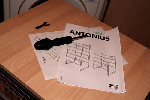il bell'Antonius
