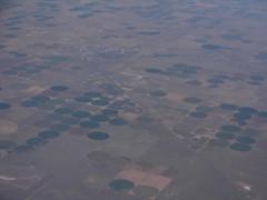 South of Dalhart, Texas (brewbooks) Tags: city circle airport texas farm airborne irrigation seadfw