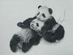 Panda's.SOLD