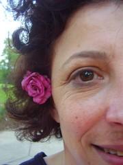 Pam Viviano