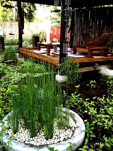 lotus garden floating table