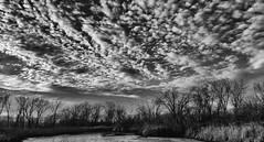 Rolling In (Nutzy402) Tags: clouds blackandwhite cloud nature sky outdoors rolling dark landscape nebraska tree trees winter