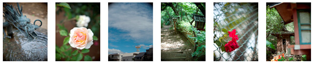 Olympus E-P1 plus Kern Macro-Switar 26mm f/1.1 -- Full-sized, full-resolution test photos