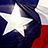 the Best of Texas group icon