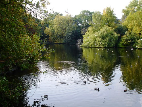 Pond in St Stephen's Green