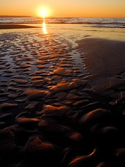 Wasaga Beach at Sunset (gallow_chris) Tags: travel family sunset summer sun ontario beach water beauty duck sand nikon weekend wasagabeach settingsun aplusphoto chrisgallow nrothernontario