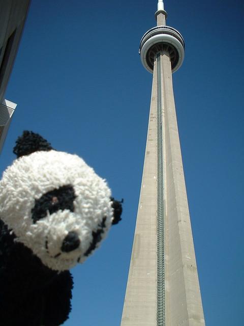 Panda - Toronto
