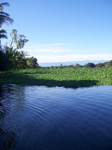 Humedales de Bocas del Toro