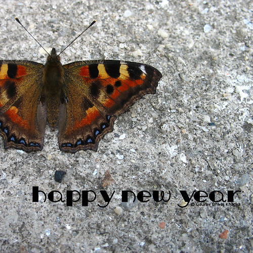 Happy New Year by Gaurav Dhwaj Khadka