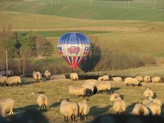 Cameron Balloon - landing!
