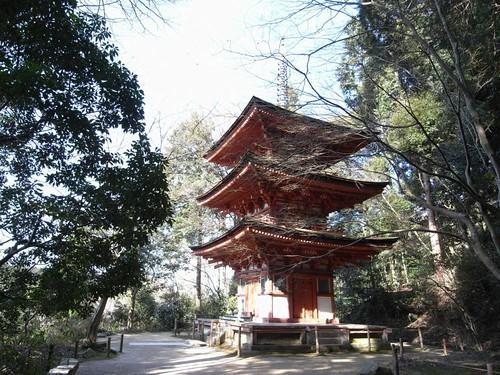 浄瑠璃寺-三重塔-02