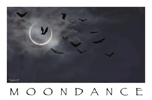 moondance 2000 fr lett