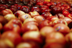 Sea of red (Chris Beauchamp) Tags: red calgary canon dof alberta apples copyrightchrisbeauchamp20072009
