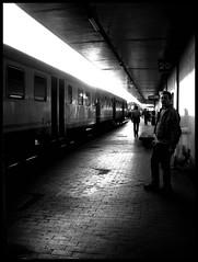 train (: panti :) Tags: people bw train persona blackwhite milano bn persone sole treno luce biancoenero numero prospettiva portagaribaldi carrozze vagoni banchine