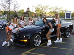 Shelby Hooters (Shelby Mustang GT) Tags: usa amanda sexy ford sarah wisconsin anne casey julie texas legs lasvegas sony blondes iraq bra hooters motorcycles c