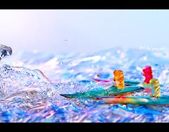 Day 304 - feel the wave, dude! (Daniel | rapturedmind.com) Tags: sun water surf bokeh gummibärchen board wave surfing surfboard gummybears haribo bär gummibear bärchen gummibär day304 gummibären project365 strobist canonef70200f28is 304365