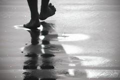 Les Empreintes (Magali Deval) Tags: blackandwhite feet beach interestingness noiretblanc pieds walkingaway plage interestingness10 interestingness20 i500 senaller explore17oct2007