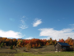 Color (farlane) Tags: autumn color fall barn michigan farm suttonsbay leelanau