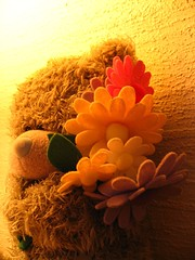 bear and flowers