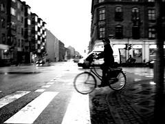 "Rainy Day with Bikes and Zebra Crossings (Mikael Colville-Andersen) Tags: girl fashion bike bicycle copenhagen style gear cycle chic 自行车 zebracrossing 女孩 bikeporn streetfashion 自転車 デンマーク 女の子 哥本哈根 streetstyle girlsonbikes コペンハーゲン cyclechic speed"" copenhagencyclechic fixedgearissoooolastcentury zakkadkzebra chic"" advocacy"" velopassioncc"