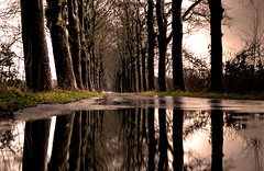 Reflected infinity (Danil) Tags: road holland reflection tree wet water dutch rain landscape nikon darkness daniel infinity spiegel d70s nederland saturday line groningen tamron leek hdr landschap reflectie midwolde