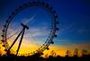 LONDON EYE (M. ALbeloushi) Tags: blue boy england orange sun london eye set night amazing nikon d70s down m lovely mohammad ordinary flickrsbest q8y albeloushi ordinaryq8y mohammadalbeloushi