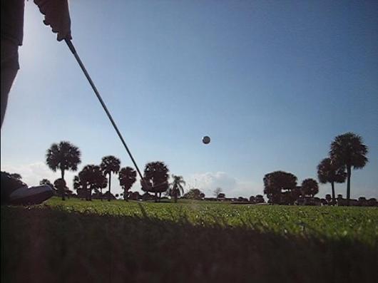 golfdiet2a