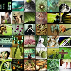 """a few of my """"favorite"""" green things . . ."""