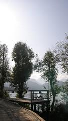 15.環湖楩??,樹林以及湖景