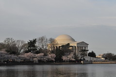 Around the Tidal Basin