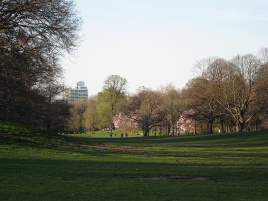 Prospect Park Turning Green Three