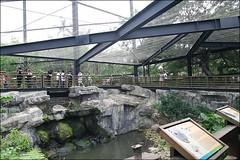 新竹市立動物園18