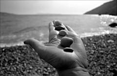 Dalmatian Zen (Mediterraneo) Tags: sea bw slr zeiss island noiretblanc bokeh croatia apx100 flektogon 20mm rodinal biancoenero adriatic exakta dalmatia komia carlzeissjena classicblackwhite rtl1000 countrejour